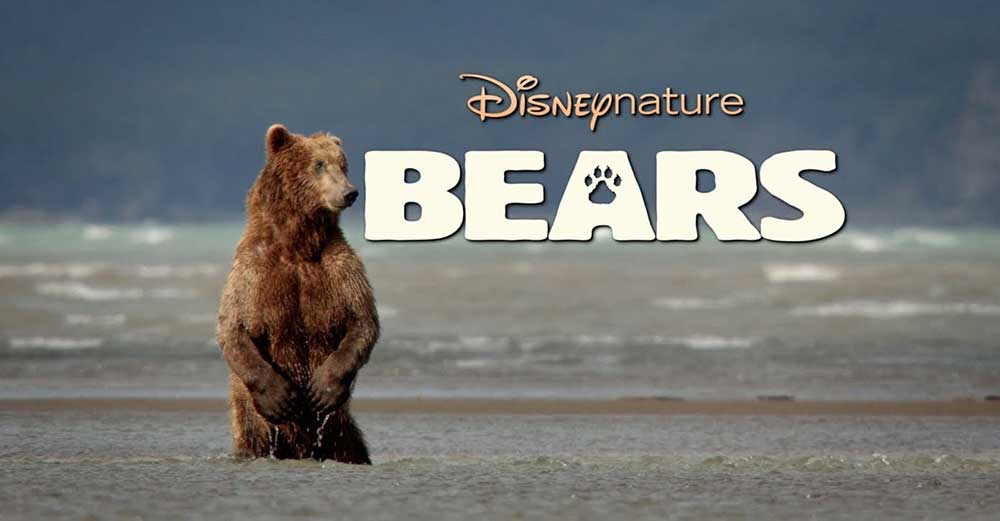 NVOC Filmavond 10 november 2015: Bears