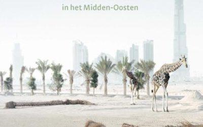 Olaf Koens – Paarden vliegen businessclass